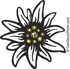 simbolo, alpi, fiore, germania, logotipo, alpinism, edelweiss