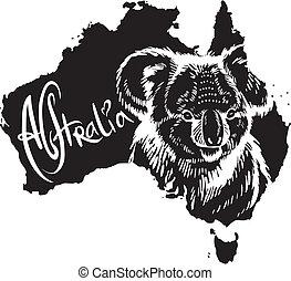simbolo, koala, australiano