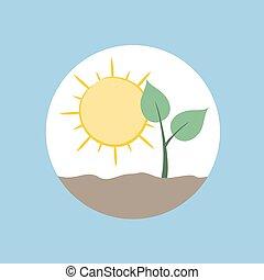 simbolo, natura