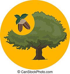 simbolo, quercia