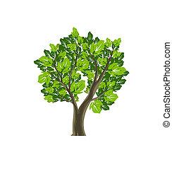 simbolo, vettore, albero, icona, natura