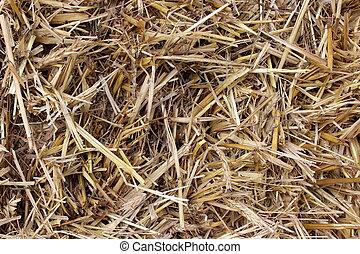 Simple background of brown hay