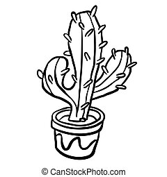 black and white cactus in a pot