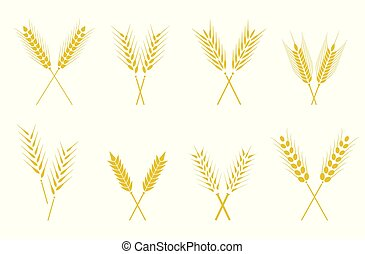 simple, ensemble, oreilles, conception, elements., icônes, wheats, blé