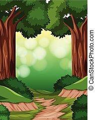 simple, forêt, scène