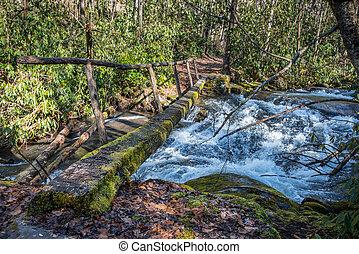 Simple Log Bridge Over Fast Moving Creek