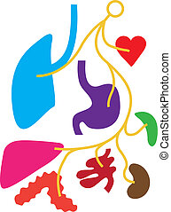 Simple Nervous system - simple nervous system illustration...