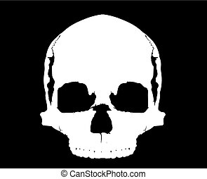 simple human skull without mandible in full-face white on a black background