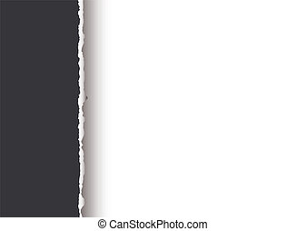 simple tear divide - Grey paper background with torn edge...