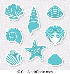 simple, vecteur, mer, etoile mer, coquilles