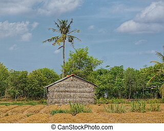 Simple wooden bamboo shed at forest