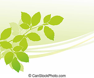 twig - simplified illustration of a green twig during early...