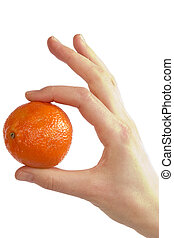 Simply Orange - A womans hand holding a small christmas...