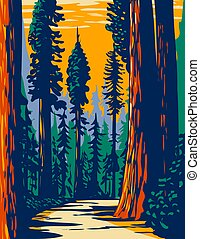 WPA Poster Art of the Simpson-Reed Grove of Coast redwoods located in Jedediah Smith State Park part of Redwood National and State Parks in California done in works project administration style.