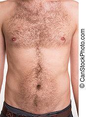 sin afeitar, hombre, pecho, y, abdomen