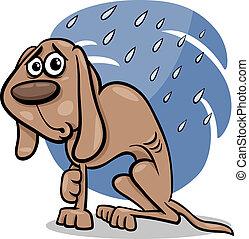 sin hogar, perro, ilustración, caricatura