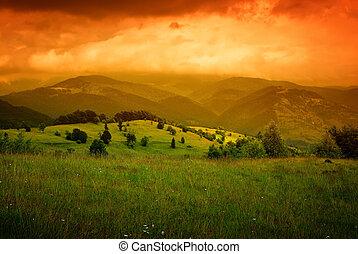 sinaasappel, bergen, op, mist