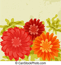 sinaasappel, chrysanthemums, grunge, rode achtergrond