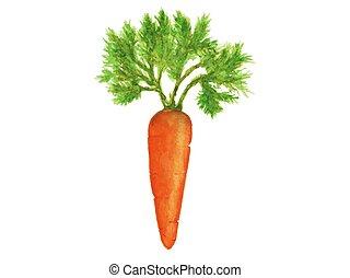sinaasappel verlaat, wortels, rijp