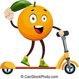 sinaasappel, witte , illustratie, scooter, vector, achtergrond.