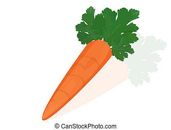 sinaasappel, wortel, met, reflectie, op wit, achtergrond
