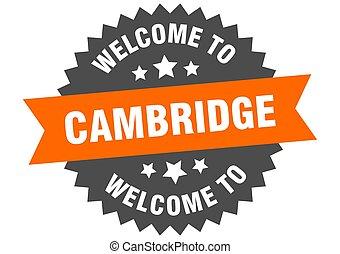 sinal., laranja, adesivo, bem-vindo, cambridge
