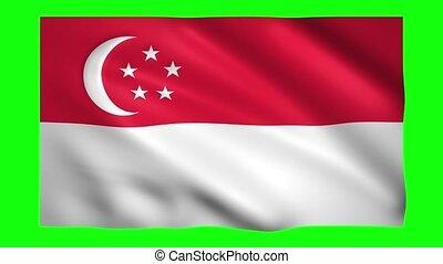 Singapore flag on green screen for chroma key