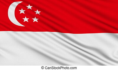 Singapore flag, with real structure of a fabric