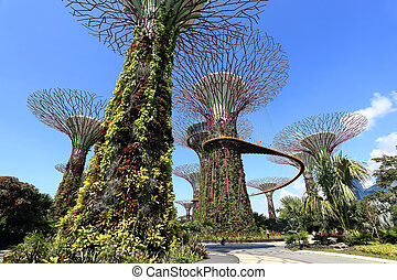 The Supertrees Grove at Gardens by the Bay - SINGAPORE-May ...