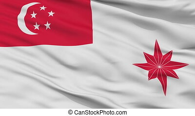 Singapore Naval Ensign Flag Closeup Seamless Loop - Naval ...