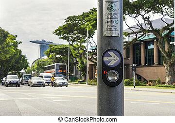 singapur, botón, caminata de cross, céntrico, camino