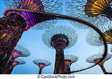 singapur, jardín, por, el, bahía, en, crepúsculo, cielo