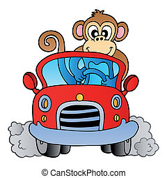 singe, dans voiture