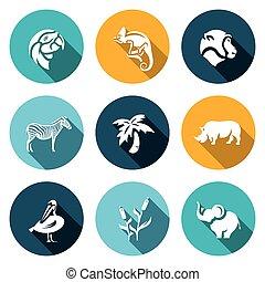 singe, ensemble, animaux, caméléon, perroquet, afrique, icons., paume, vecteur, pélican, rhinocéros, roseau, zebra, elephant.