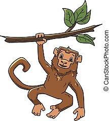 singe, illustration, caractère, arbre, isolé, vecteur, white., animal, pendre, branch.