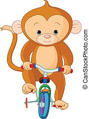 singe, sur, vélo