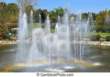 singing fountain in Utopia Orchid Park, Israel