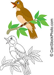 Singing nightingale perched on a branch, color and black-and-white outline illustrations on a white background