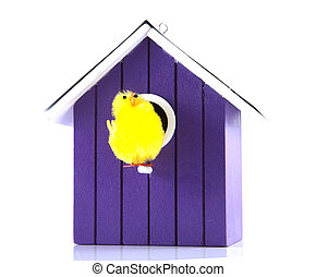 Single bird house with bird on a white background.