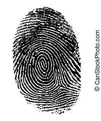 Single black fingerprint - hi resolution image