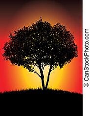single black tree in sunset