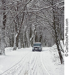 single car on a winter road in the forest