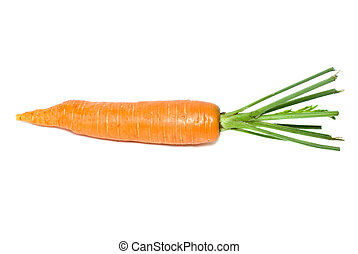 Single carrot isolated on the white background