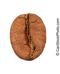 Single coffee bean close-up isolated on white background