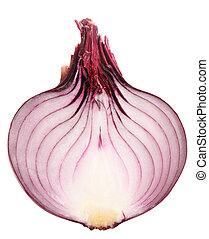 Single cross dark-red fresh onion. Isolated on white ...
