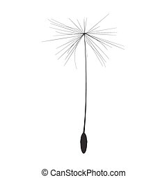 Single Dandelion Seed Vector Illustration EPS10