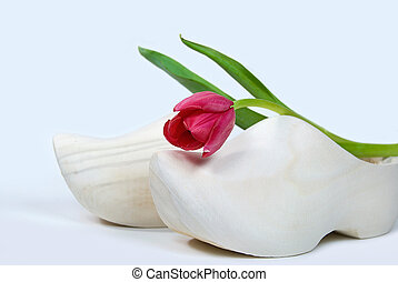single Dutch tulip - Single red tulip on wooden shoe.