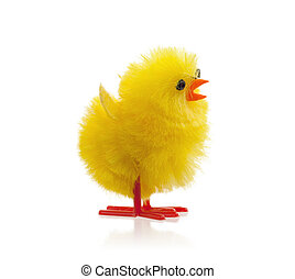 Single easter chick, isolated