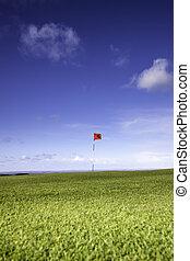 Single golf flag