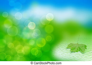single green leaf in water on a tender blurred background